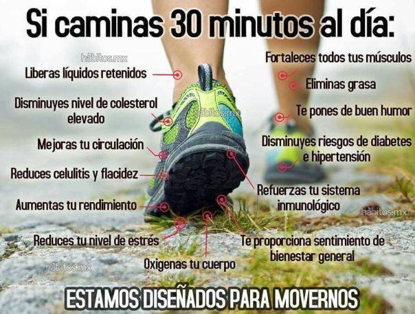 caminas-30-minutos