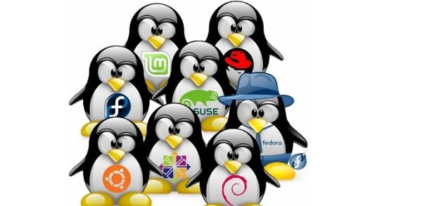 distribuciones-linux-logo